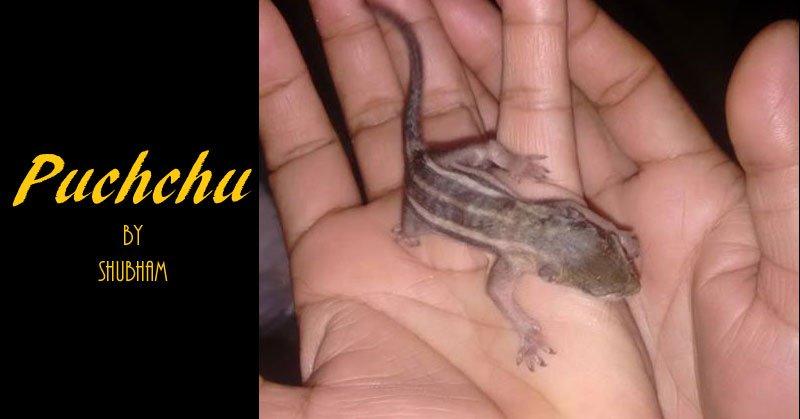 Puchchu - Story by shubham tiwari